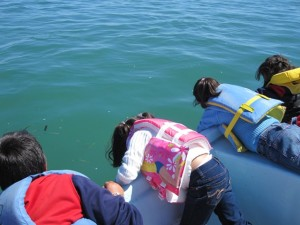 Four children with dark hair and brightly-colored life jackets lean over the side of a boat, staring at the clear ocean water below
