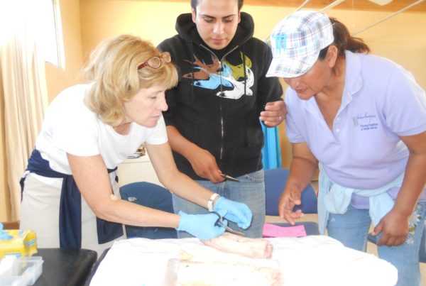 Three people crouch over a fleshy object on a table covered in white cloth. One of the people has on blue latex surgical gloves and is holding scissors.