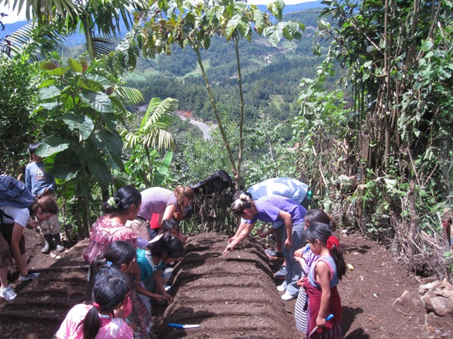 Ten people of all ages hunch over a row of soil planting seeds. We see lush forestry in the background