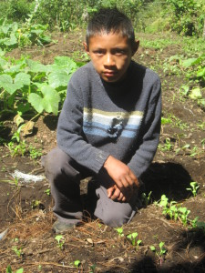 A boy crouches in the middle of a dirt field with budding plants. he is wearing dark, full length clothing and looking seriously at the camera