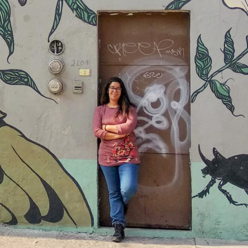 Monica Condes stands in front of a mural of a beetle and a bird. She has chest-length dark hair, a pink blouse, and jeans.