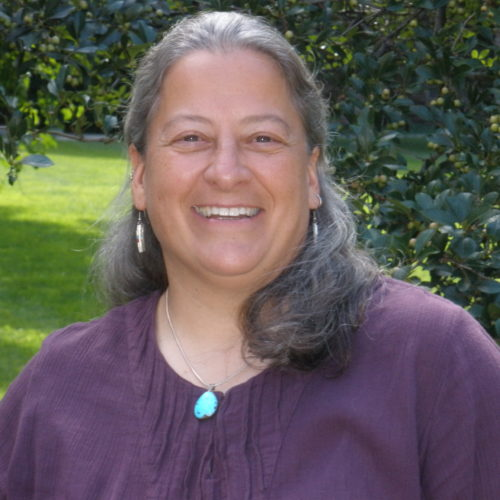 A picture of Doreen from the chest up. She is a middle-aged woman with collarbone-length gray hair and a full-toothed smile. She wears a purple blouse, dangle earrings, and a turquoise necklace.
